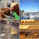 Austevoll: Bekkjarvik og Kulturbakeriet Storebø