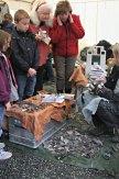 Morten Kutschera fra Kutschera Crafts hadde mange tilskuere som ville se flintsmeden trylle frem steinalderredskap