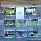 Hanevikdagen har fotoutstilling i år var det nyare bilete frå ulike grender, og om husdyra i krinsen