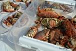 Nykokt krabbe