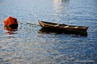Båtar ligg og dupper i ile