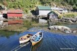 Flott kystmiljø i Sæbøvågen