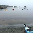Rolege havsportaktivitetar ein stille søndags føremiddag